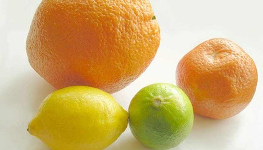 Citrus trees are prone to many diseases.