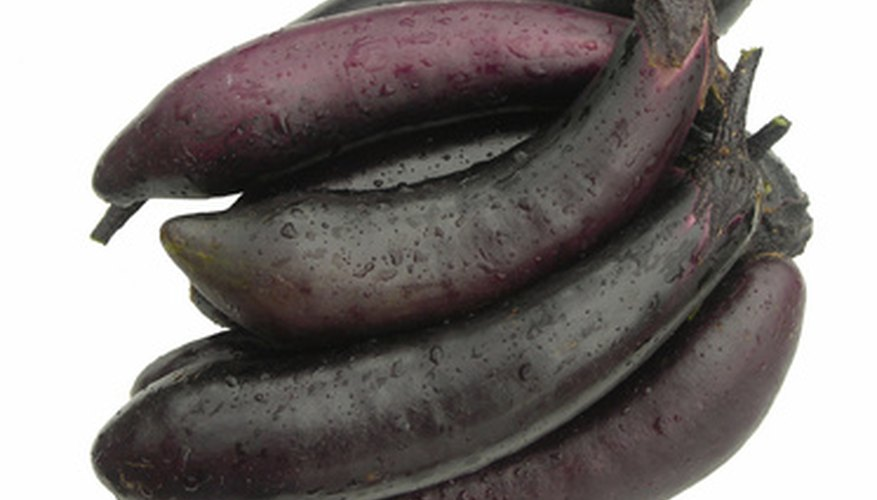 Seeds can be harvested from the eggplant's fruit.