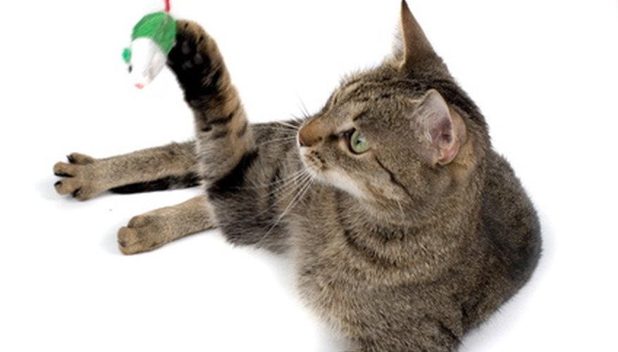 Many Cat Toys Are Stuffed With Dried Catnip