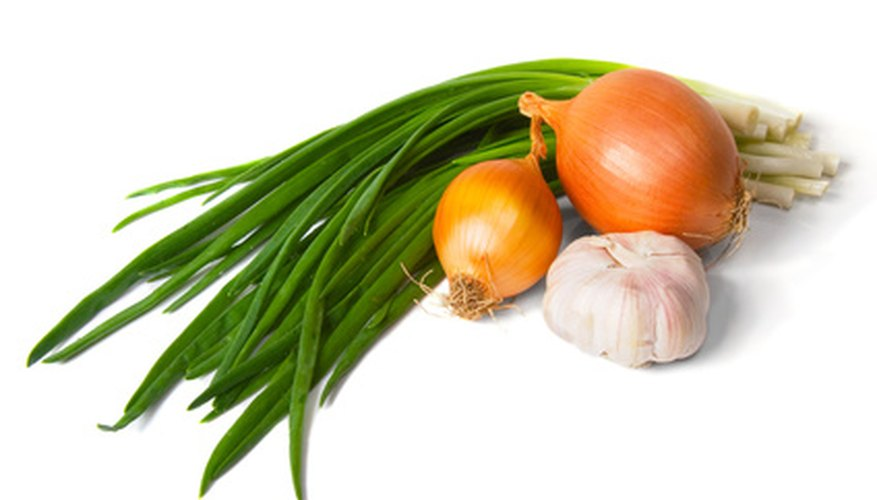 Different onion varieties can be grown in full sun or shade.