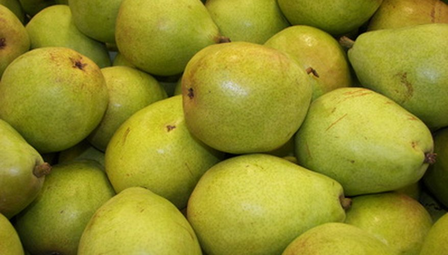 The pear is delicious and nutritious fruit.