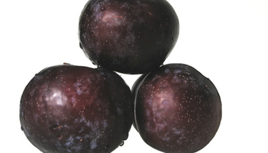 Different varieties of plums grow in Nebraska.