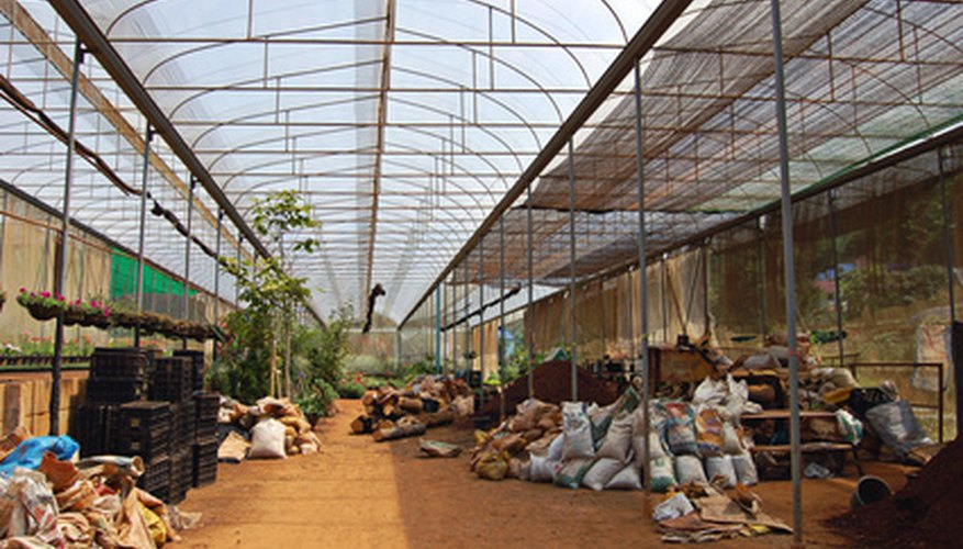 There are advantages and disadvantages to greenhouses.