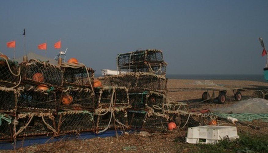 If you like eating crabs, you can harvest your own using your homemade crab nets.