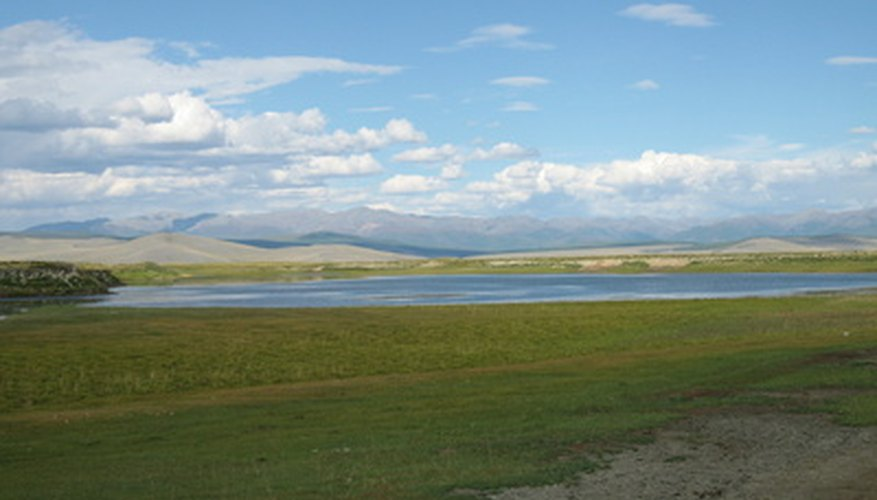 temperate grassland features