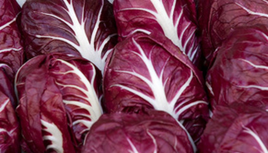 Red cabbage is used for cooking and tastes like green cabbage.