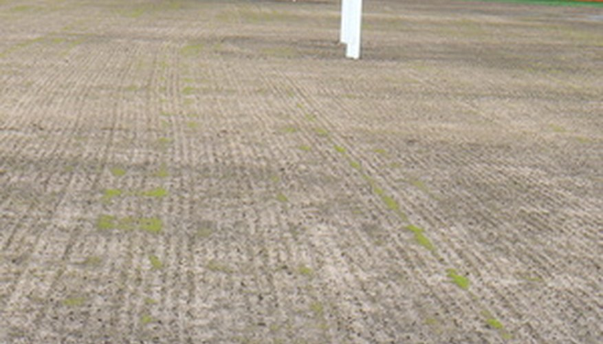 A freshly seeded athletic field most likely seeded with old but properly stored seeds