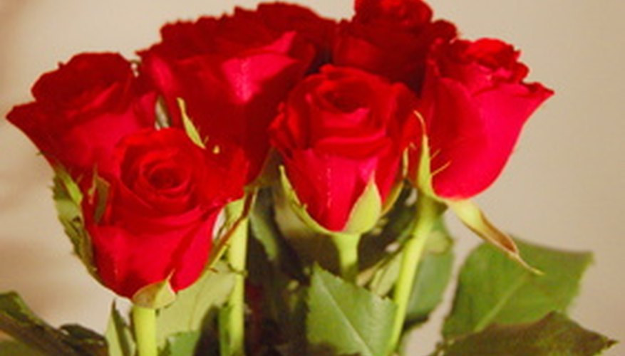 Long-stemmed red roses are a perennial favorite with consumers