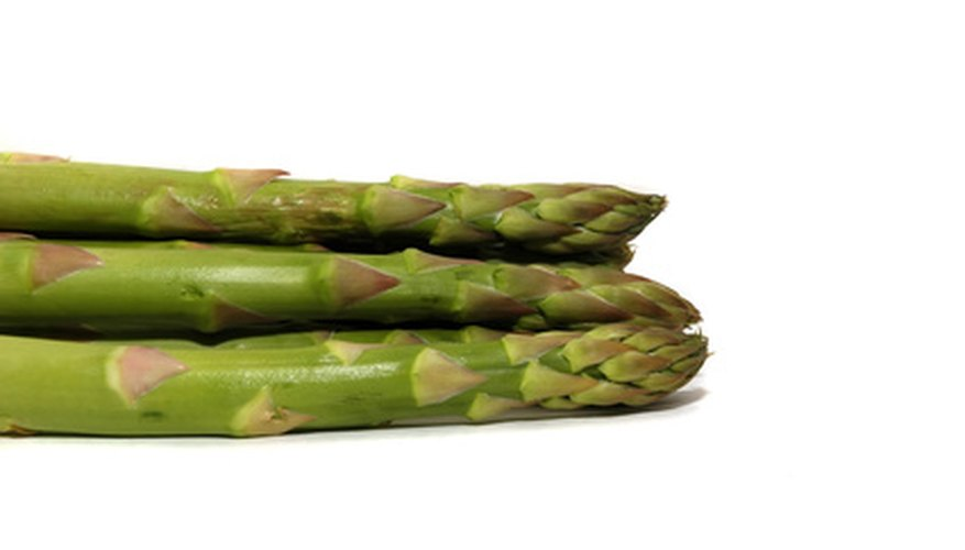Asparagus should be planted in the fall if you live in the South.