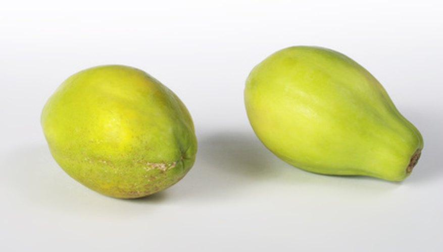 Pawpaws are among the fruits which grow well in shade.