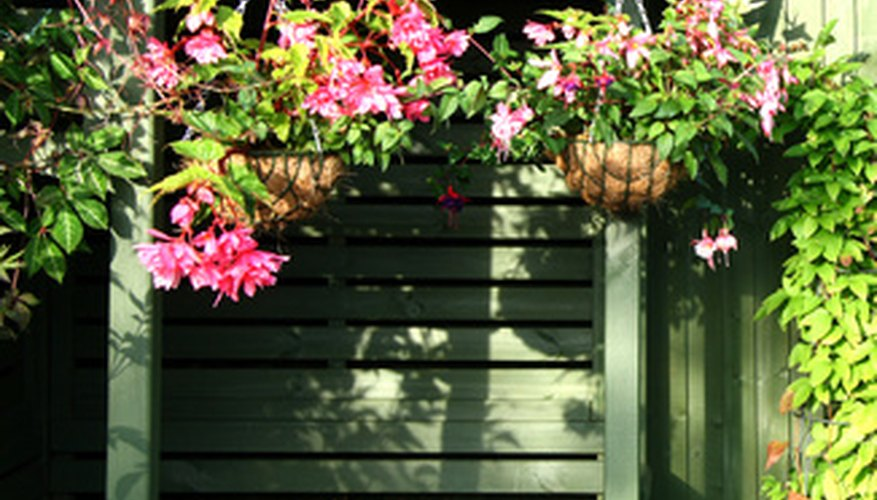 Hanging baskets provide a simple way to dress up the exterior of the home.