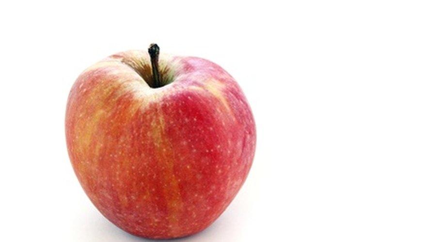 Cómo hacer gourd de Apple Birdhouses | Guías de jardín
