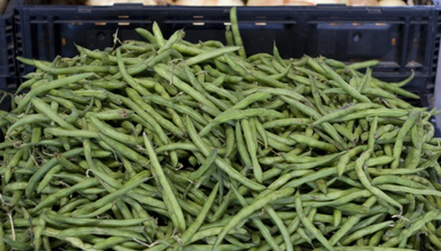 Green beans, a member of the legume family, are high in protein and low in fat.