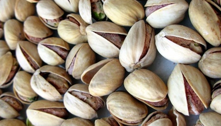 Enjoy fresh pistachio seeds by growing your own trees.