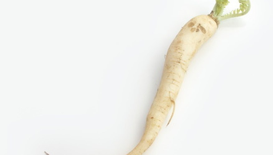 Turnips come in a variety of shapes and sizes, including long and carrotlike.