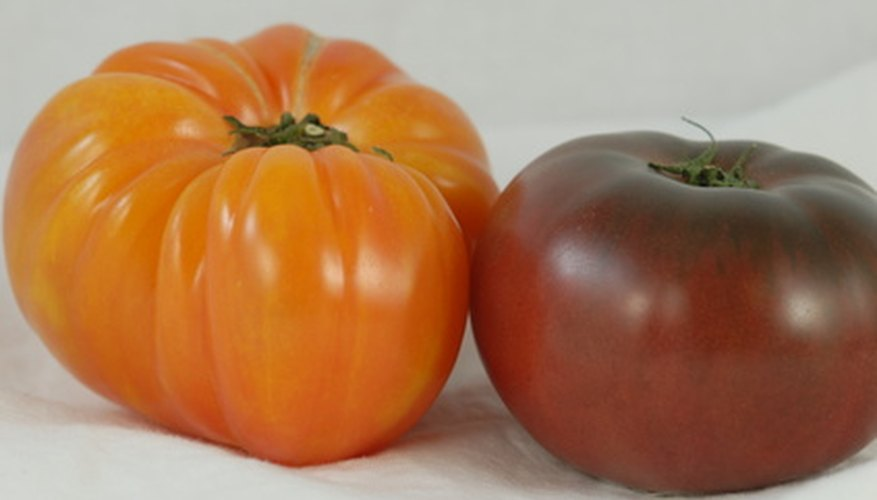 Heirloom tomatoes are one crop that will thrive in Florida's hot, humid growing seasons.