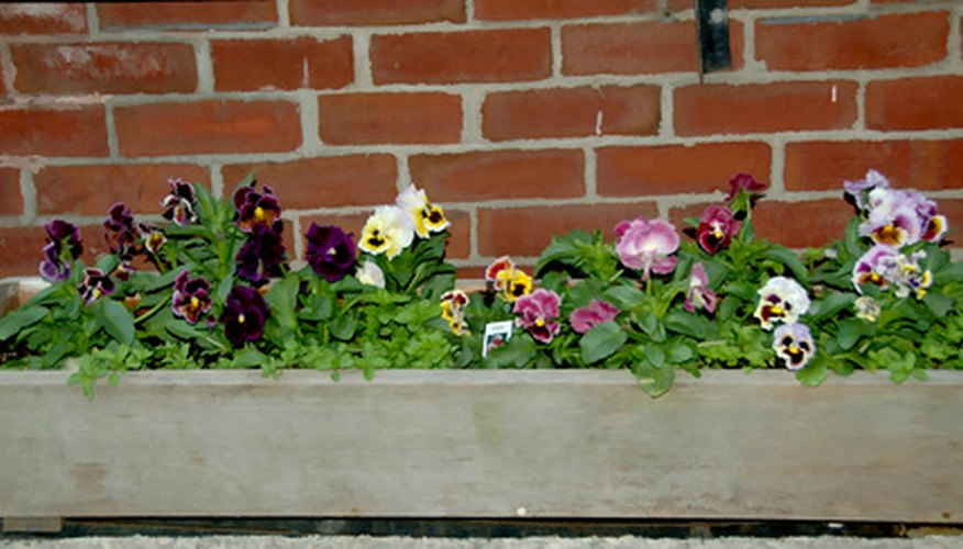 Flowerboxes add color and beauty to small areas of your yard, porches and patios.