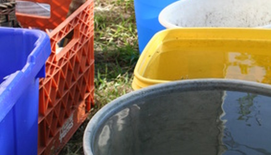 Plastic buckets can be recycled to grow tomatoes.