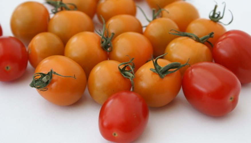 Tomatoes grow efficiently in grow boxes.