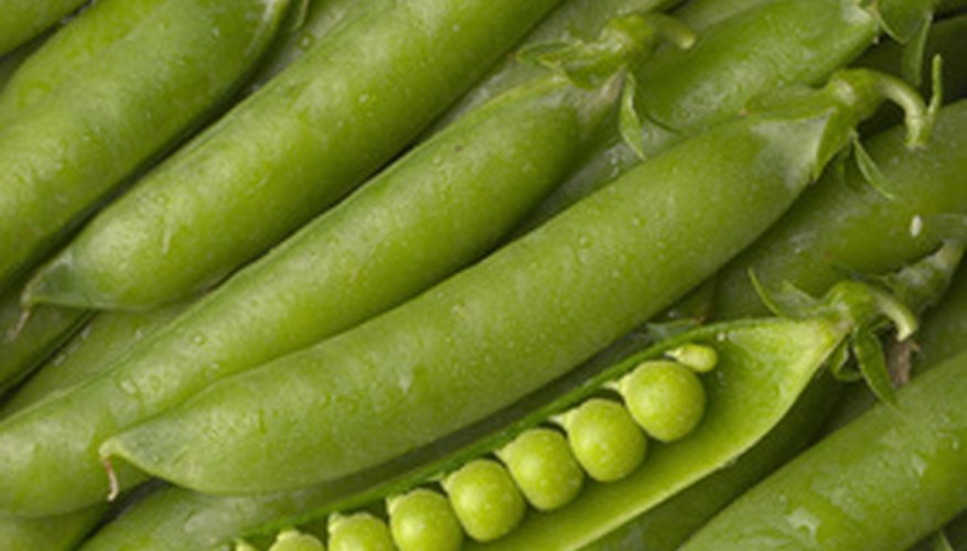 Sugar snap peas are loaded with nutrients