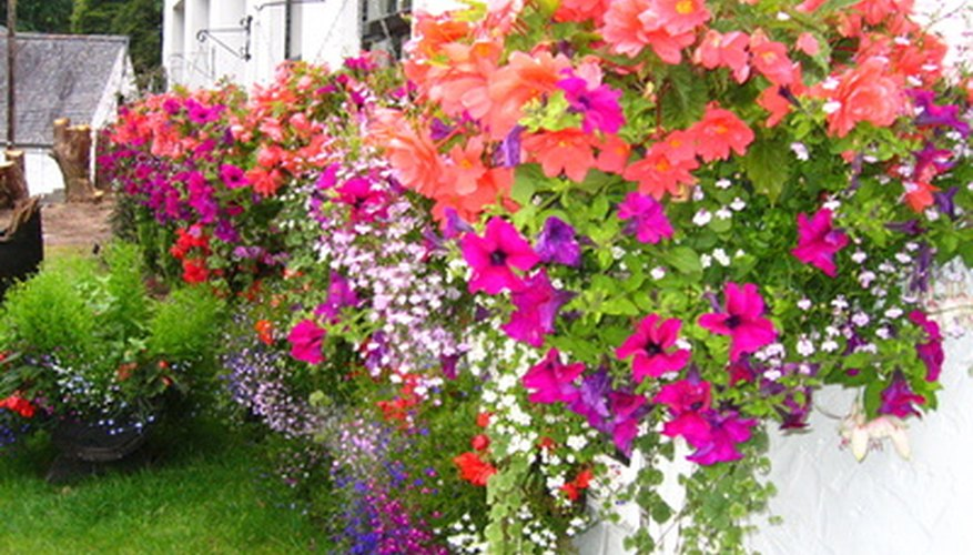 Flower boxes add natural color to outdoor spots.