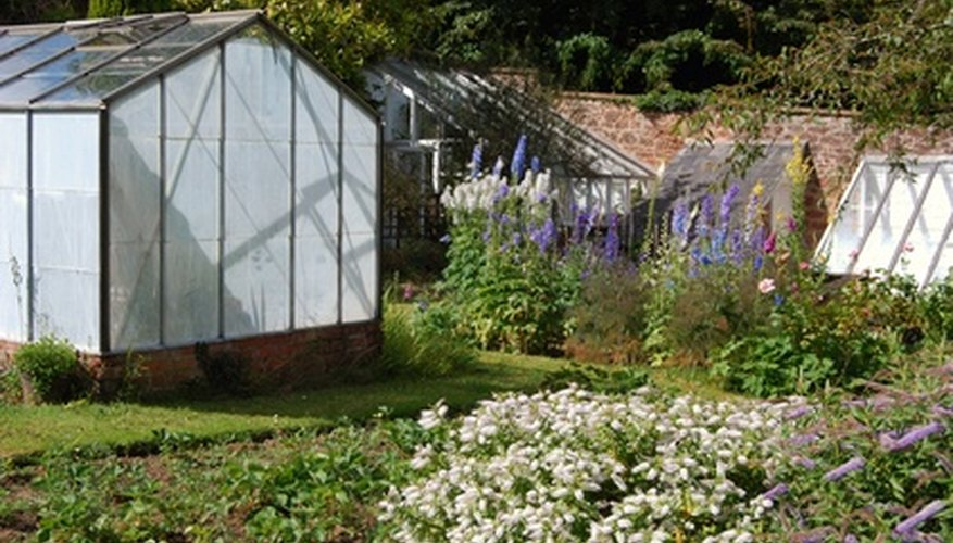 Greenhouses can easily extend your growing season.
