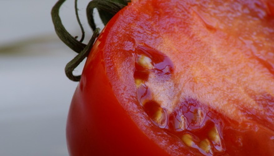 Use a fully ripe tomato to harvest seeds.