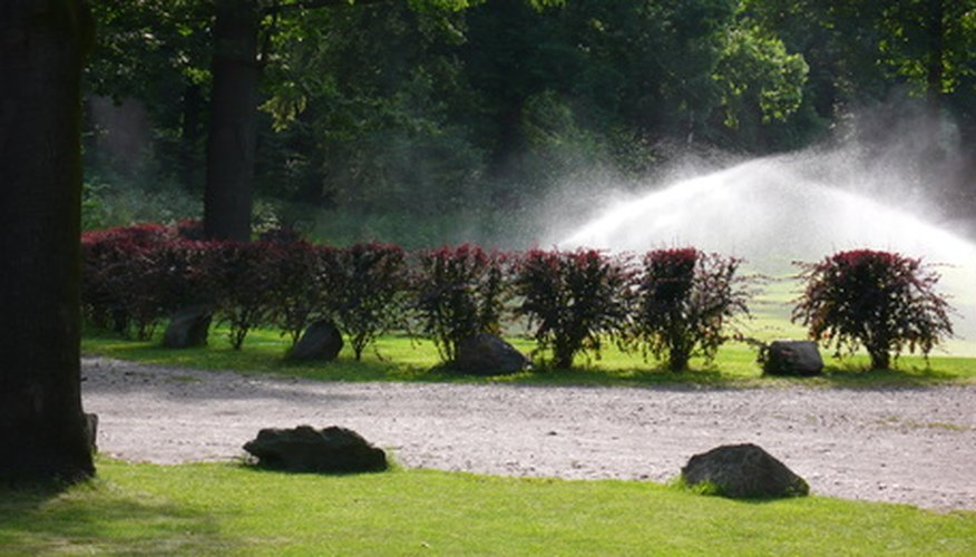 Sprinklers automate the otherwise tedious task of irrigating the garden.