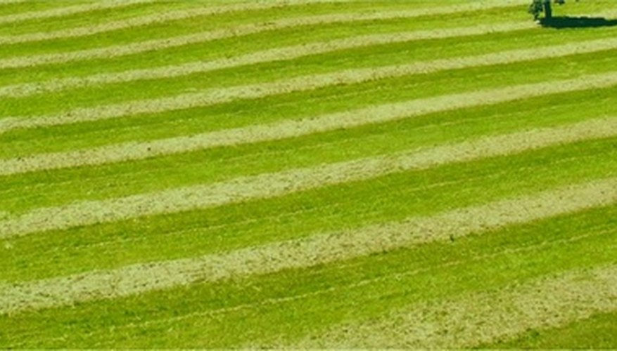 Lawn mowing techniques include stripes and more intricate patterns.