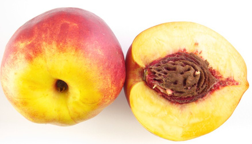 A peach pit of a hybrid peach will not produce the same type of fruit.