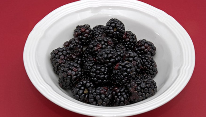 Enjoy freshly picked blackberries for a nutritious snack.