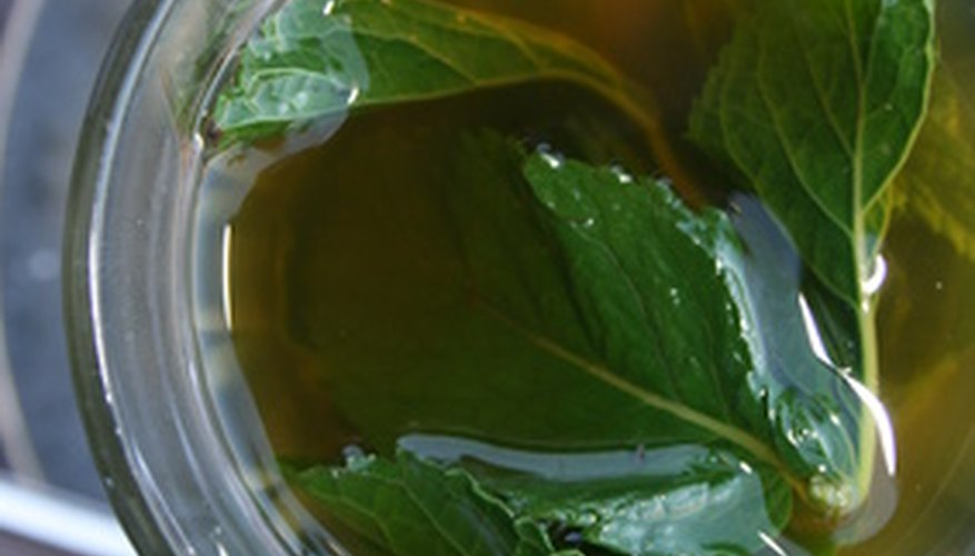 Steeping mint leaves in water creates a refreshing herbal infusion.
