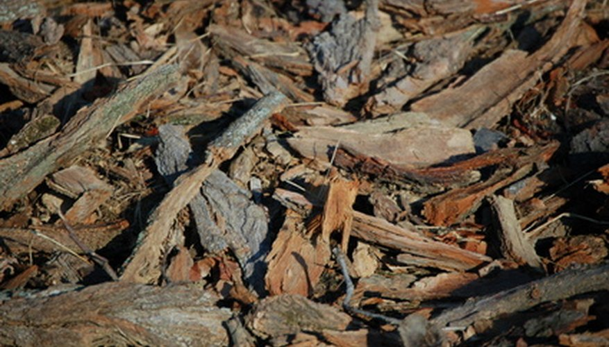Wood chips attract termites.