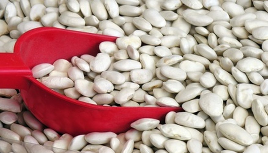 White bean seeds are more sensitive to the cold.