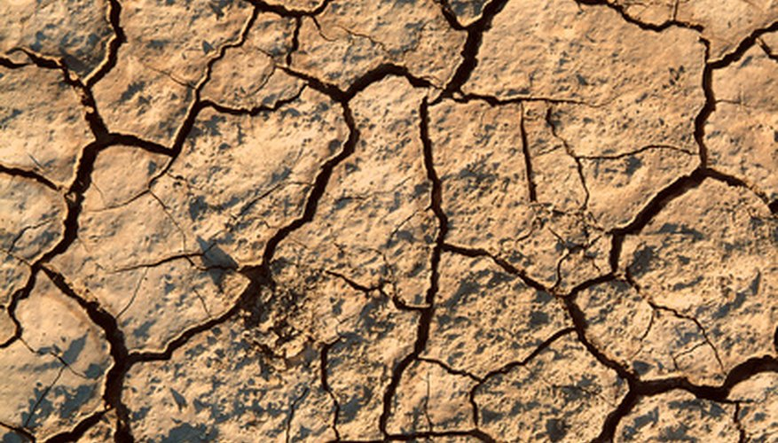 Clay soil can become hard and cracked.