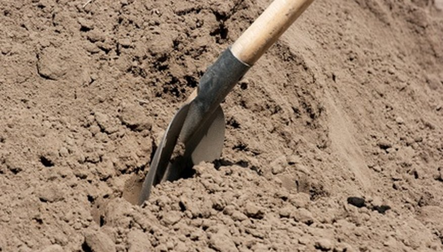 A shovel is a handy tool for sampling soil.