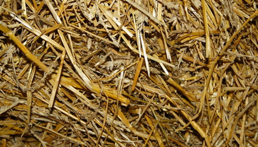 Straw mulch is easy to handle.