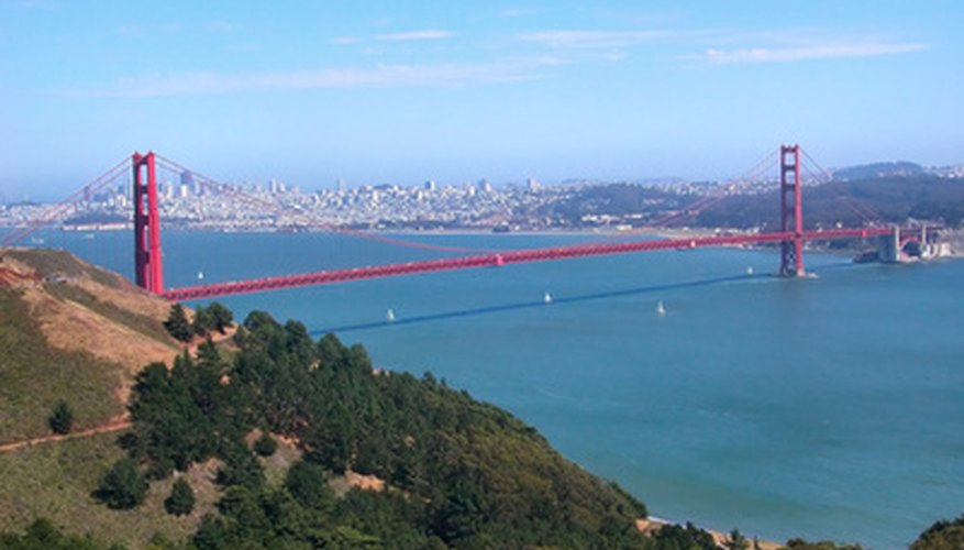 Protests saved thousands of eucalyptus trees in the Golden Gate Recreation Area.