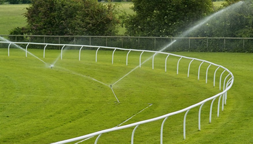 Sprinklers are useful for large areas of turf but soaker hoses are better for flowers, vegetables and shrubs.