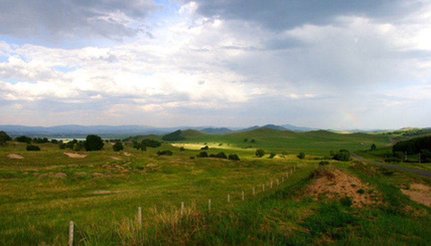 Grasslands have very fertile soil.