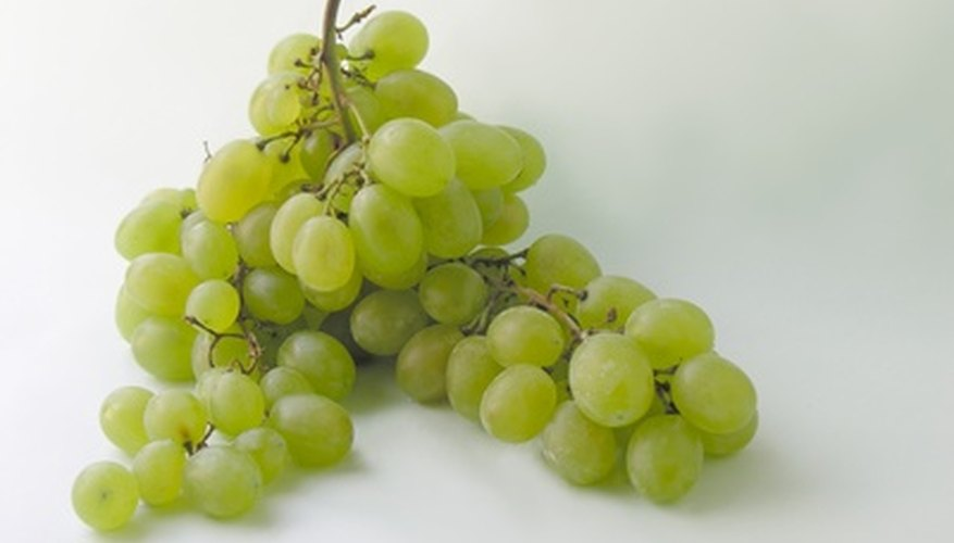 Thompson seedless grapes are light green.