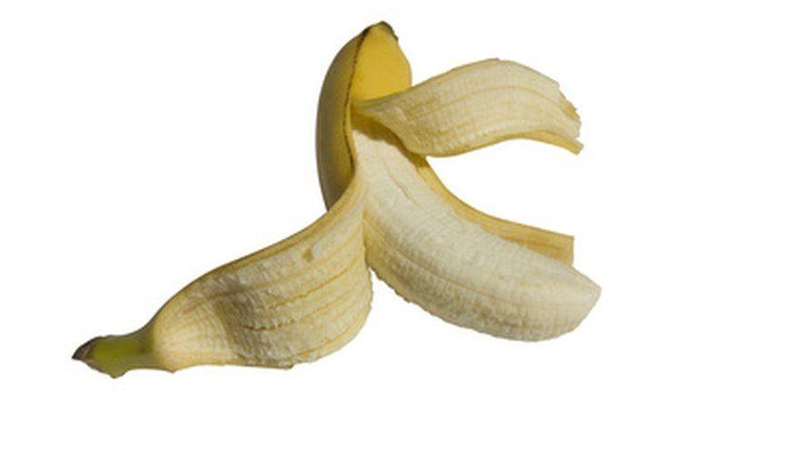 Many fruits, such as bananas, are grown on triploid trees.