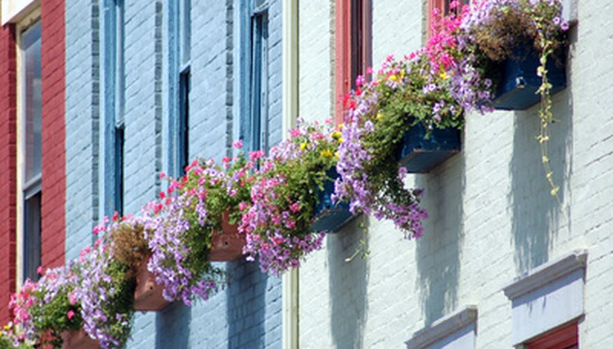 Determine window box sizes prior to purchase or building.