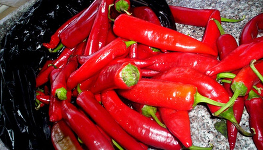 Peppers, hot and sweet alike, thrive in Arizona climate.