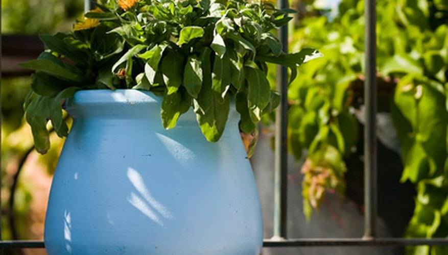 Plant containers must have drainage and be able to hold soil.