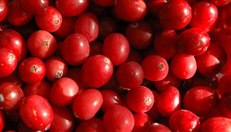 Freeze dried cranberries make a healthy snack.