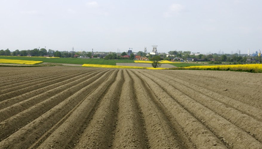 Innovations in plowing were introduced to Europe from China.