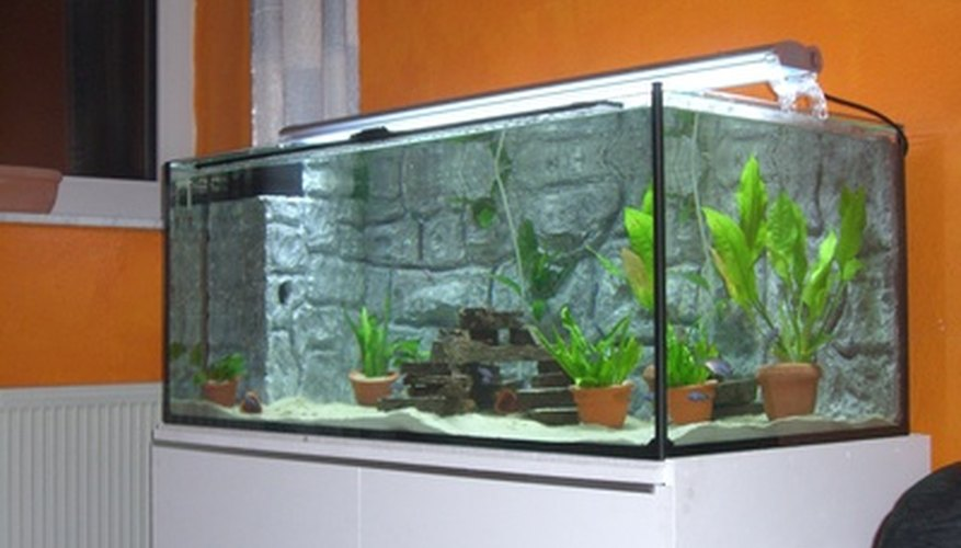 The volume of an aquarium can be measured in liters.