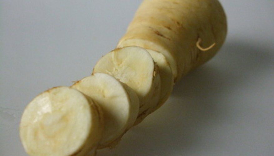 Parsnips grow well in Florida gardens.