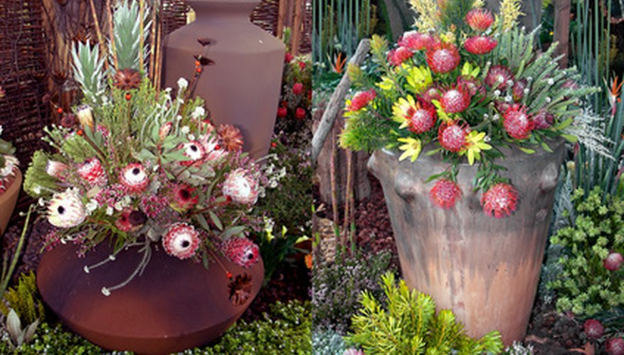 Flowers in pots make attractive outdoor accents.